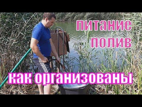 Подкормочный узел и организация полива на ежевике и малине