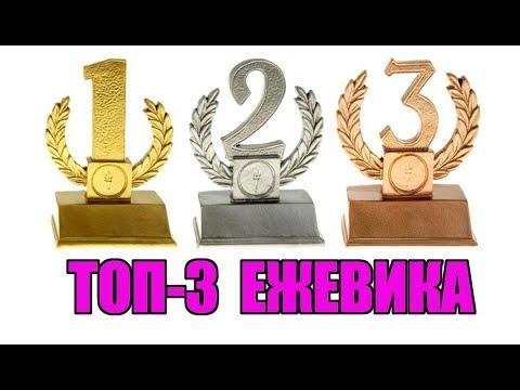 Итоги сезона 2019. Топ3 сортов ежевики