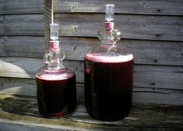 Простой рецепт ежевичного вина