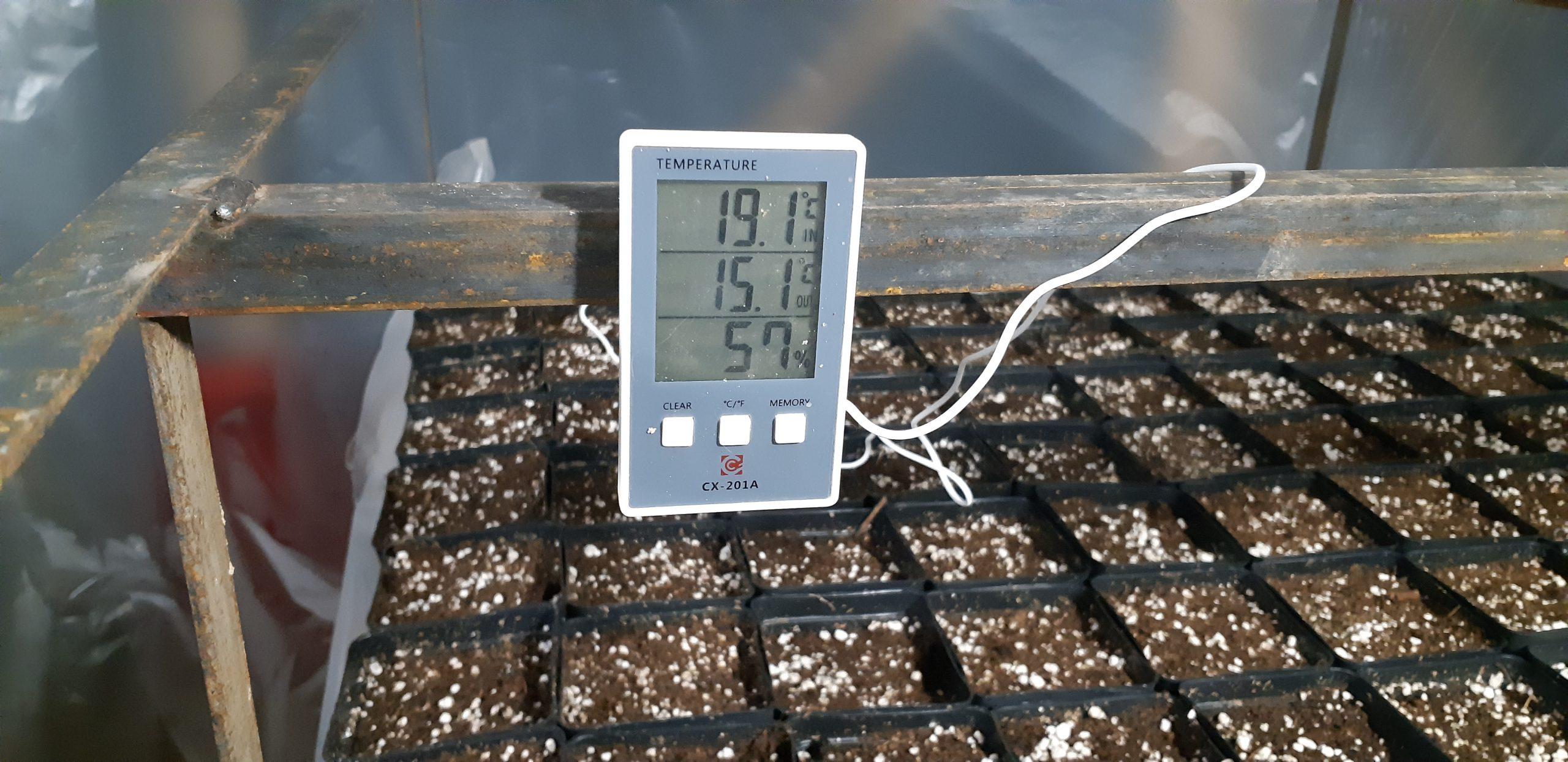 Контроль температуры в горжках с корнями ежевики