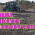 Подготовка почвы к посадке малины и ежевики